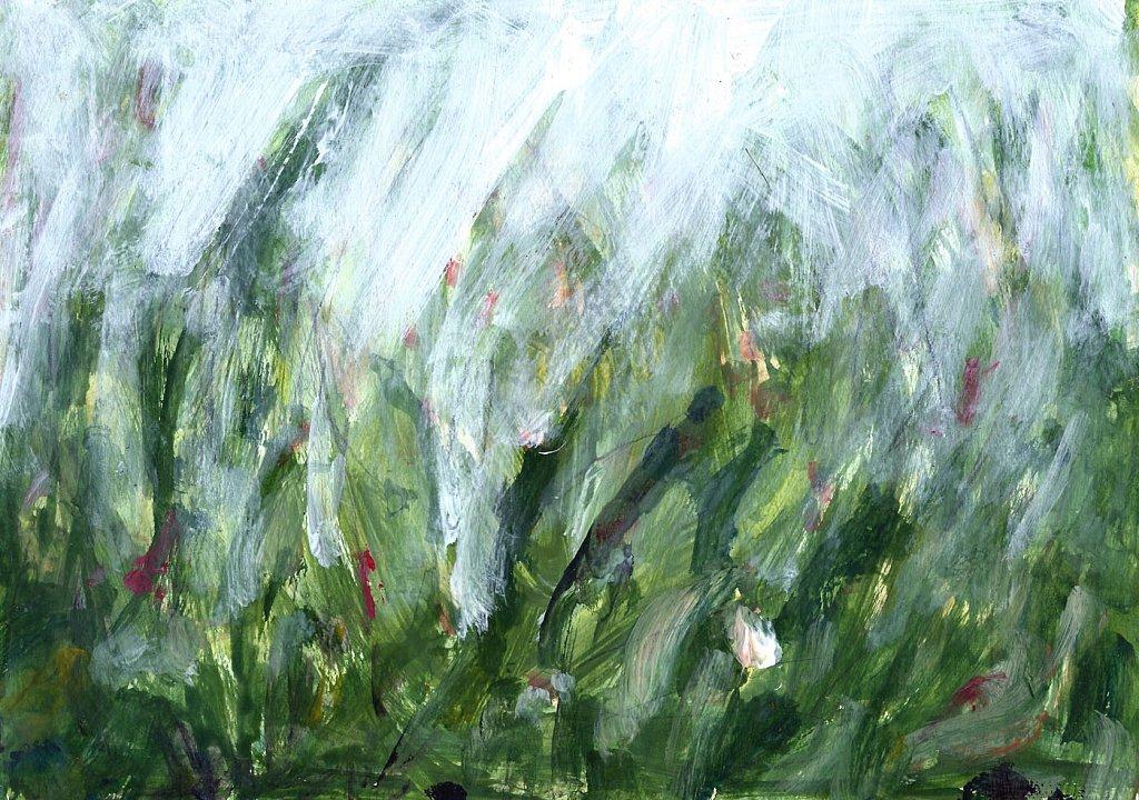 bloemenveld-5.jpg