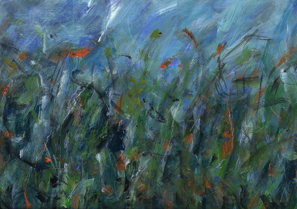 bloemenveld-12.jpg